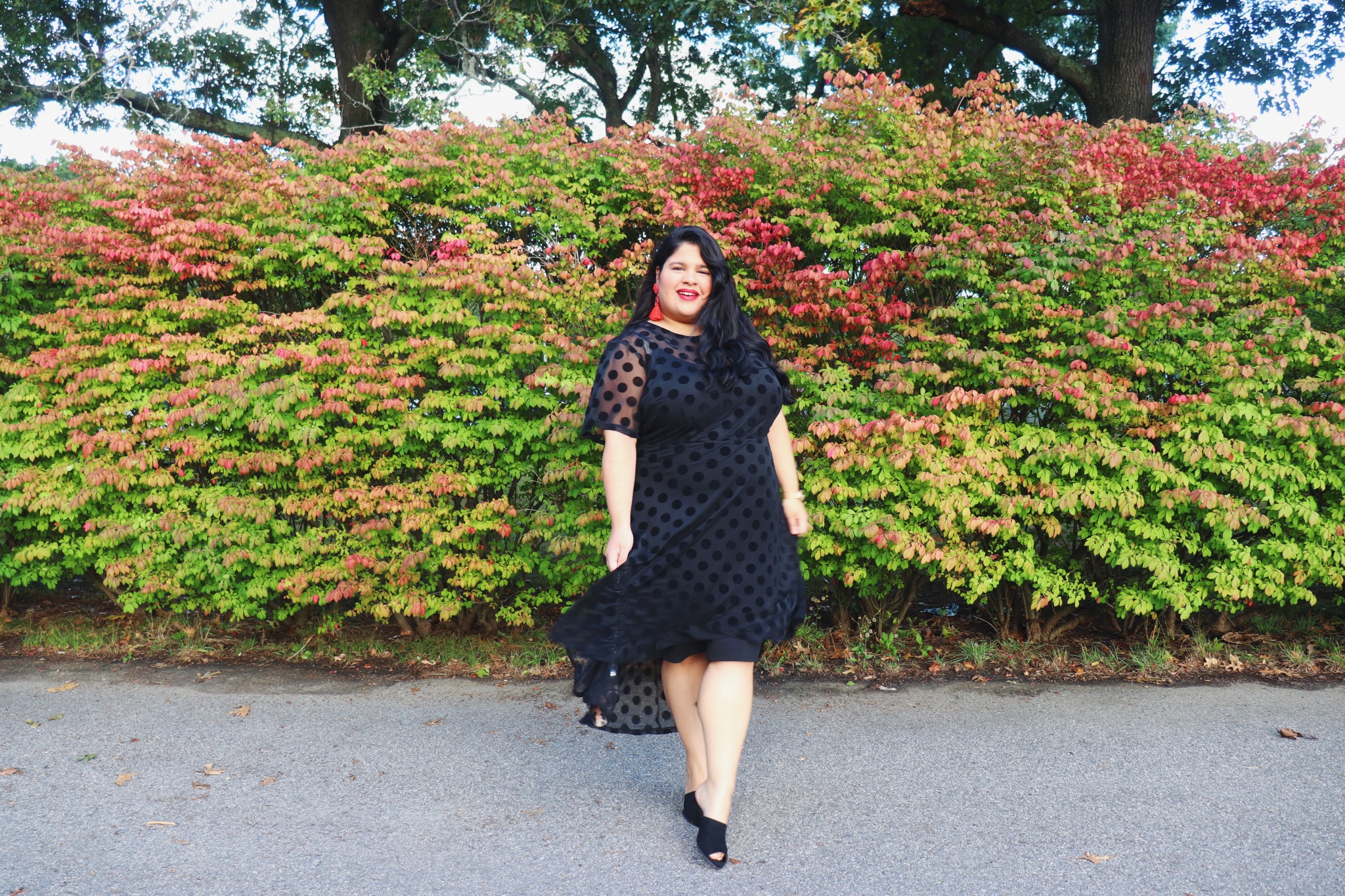 Macy's Plus Size Little Black Dres